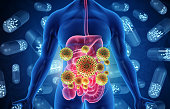 istock Human digestive system infected by virus and bacteria 1250205478