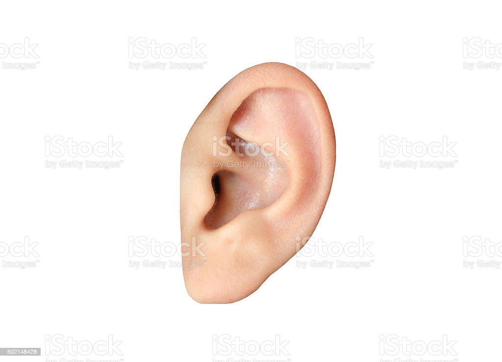 Human ear closeup stock photo