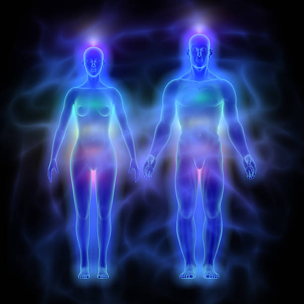 human energy body (aura) with chakras - woman and man - aura stock photos and pictures