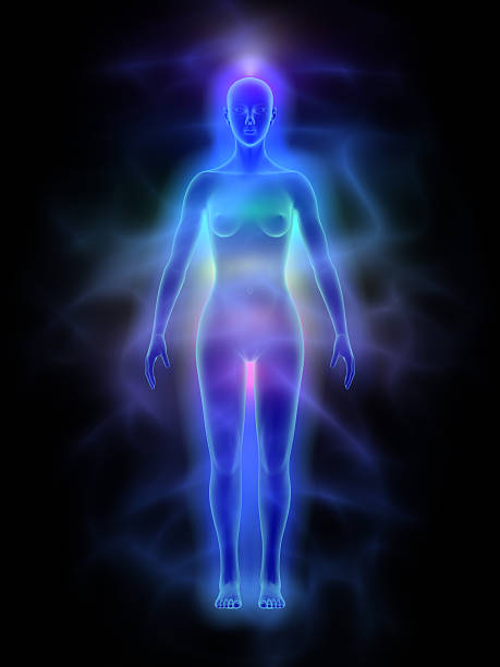 human energy body (aura) with chakras - woman - aura stock photos and pictures