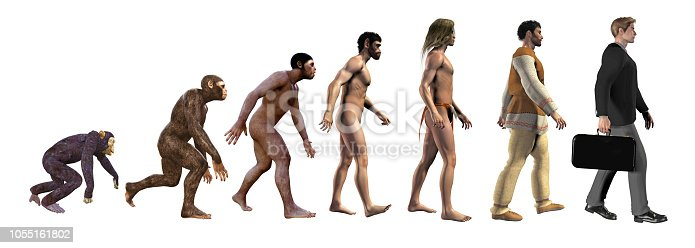 Human evolution, from ape to business man, 3d illustration