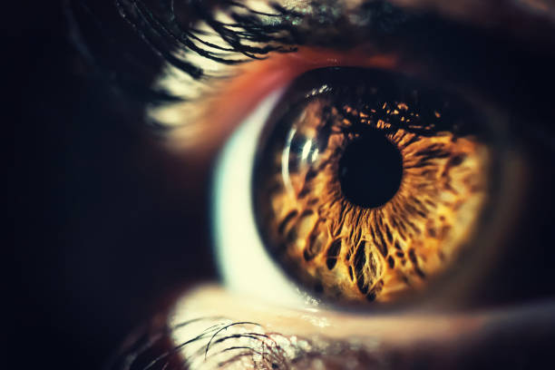 human eye iris close up - eye stock pictures, royalty-free photos & images