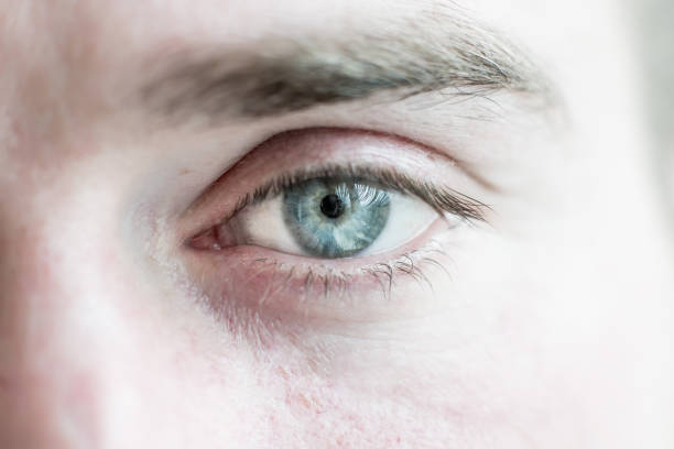 human eye is very close. Macro shot of a male  blue with gray eye. White race stock photo