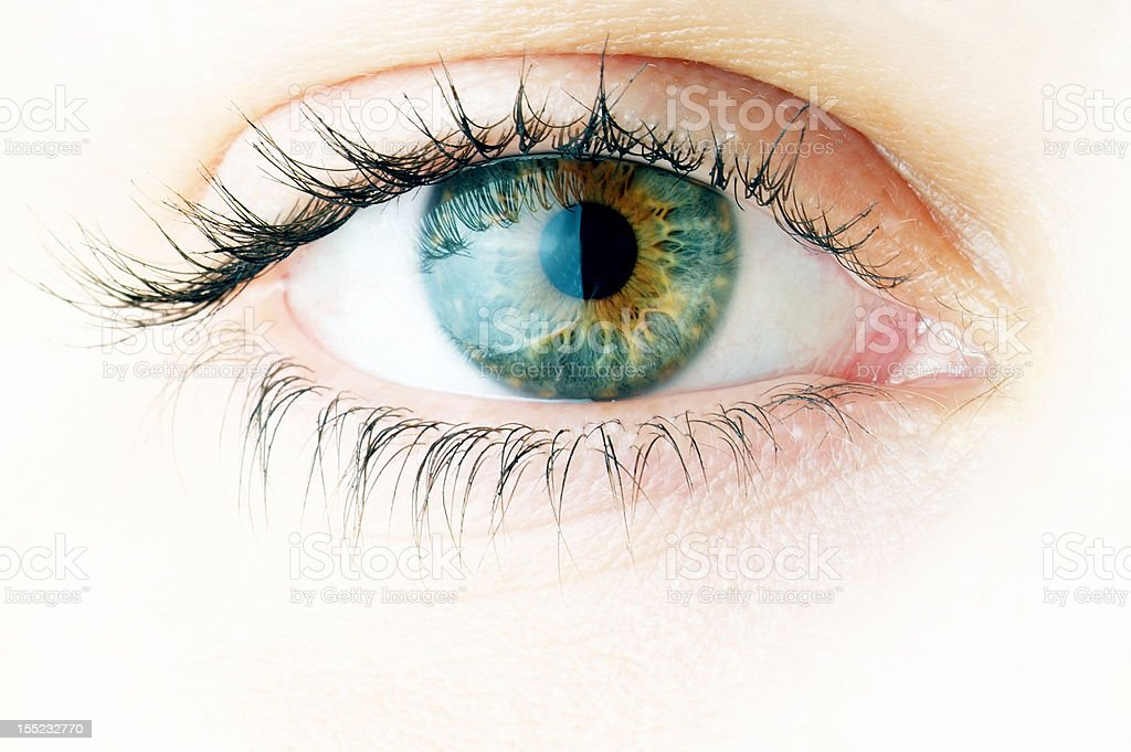 Human eye. macro shooting... stock photo
