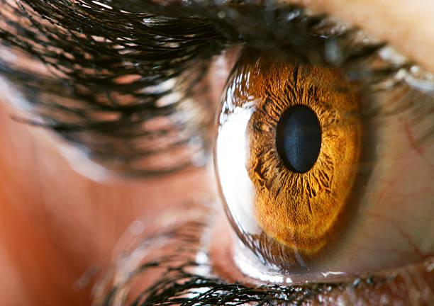 Human eye Human eye macro closeup view iris eye stock pictures, royalty-free photos & images