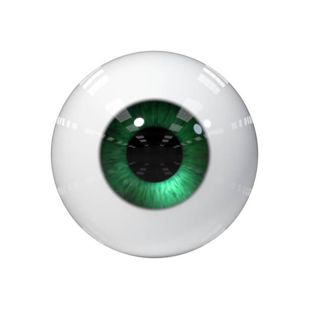 menschliche Auge mit grünen Iris isoliert auf weißem Hintergrund – Foto