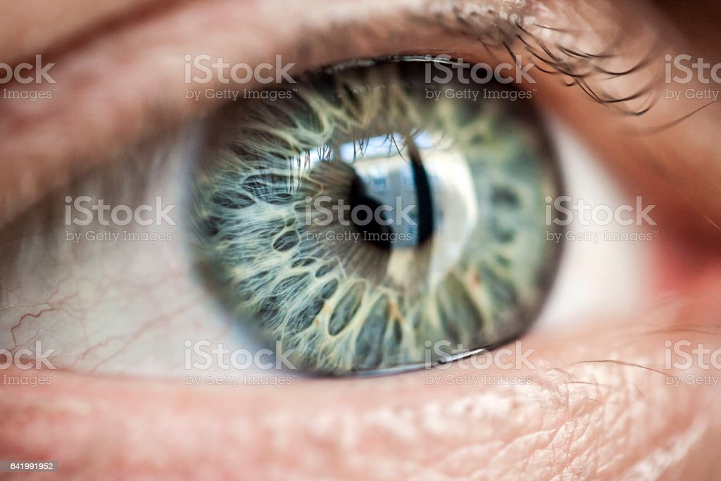 Human eye with very special patterned iris – Foto