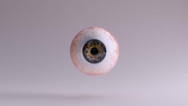 human eyeball - tessuto umano foto e immagini stock