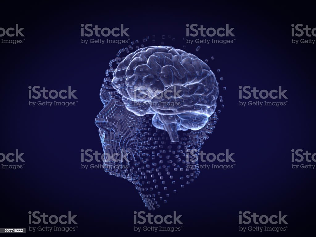 Human face and brain Hologram Wireframe Style.3D rendering stock photo