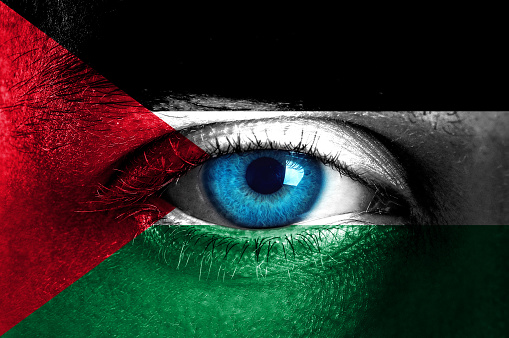 Human face painted with flag of Palestine
