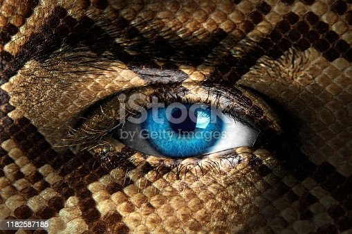 Human face painted with snake texture
