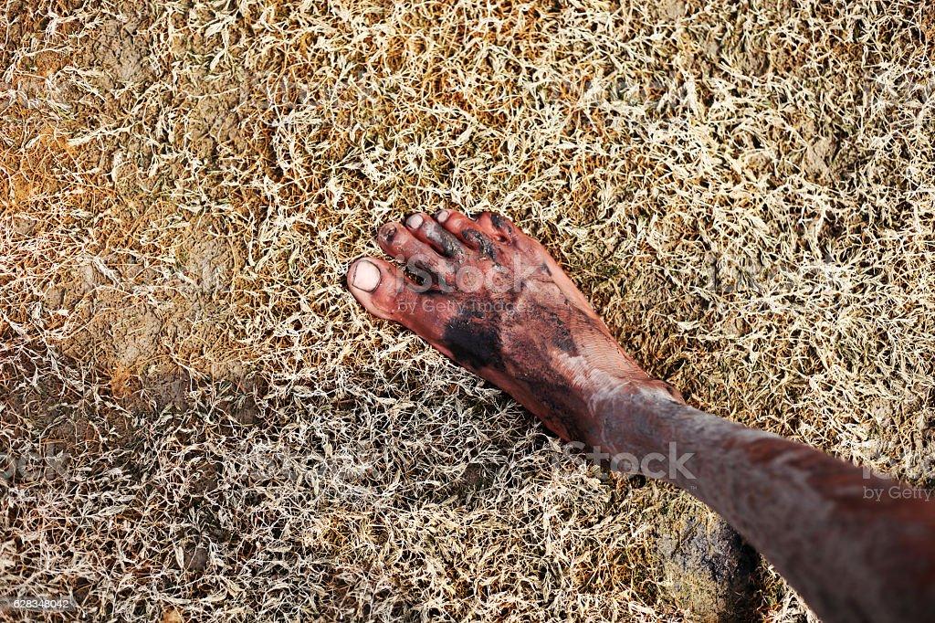 Human feet walking in wet soil stock photo