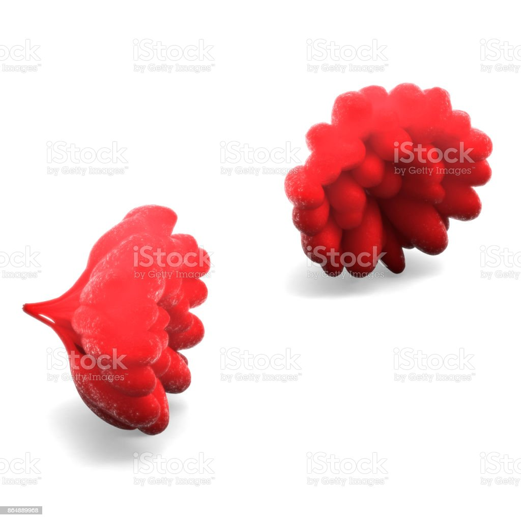 Human Female Body Organs Stock Photo & More Pictures of Abstract ...