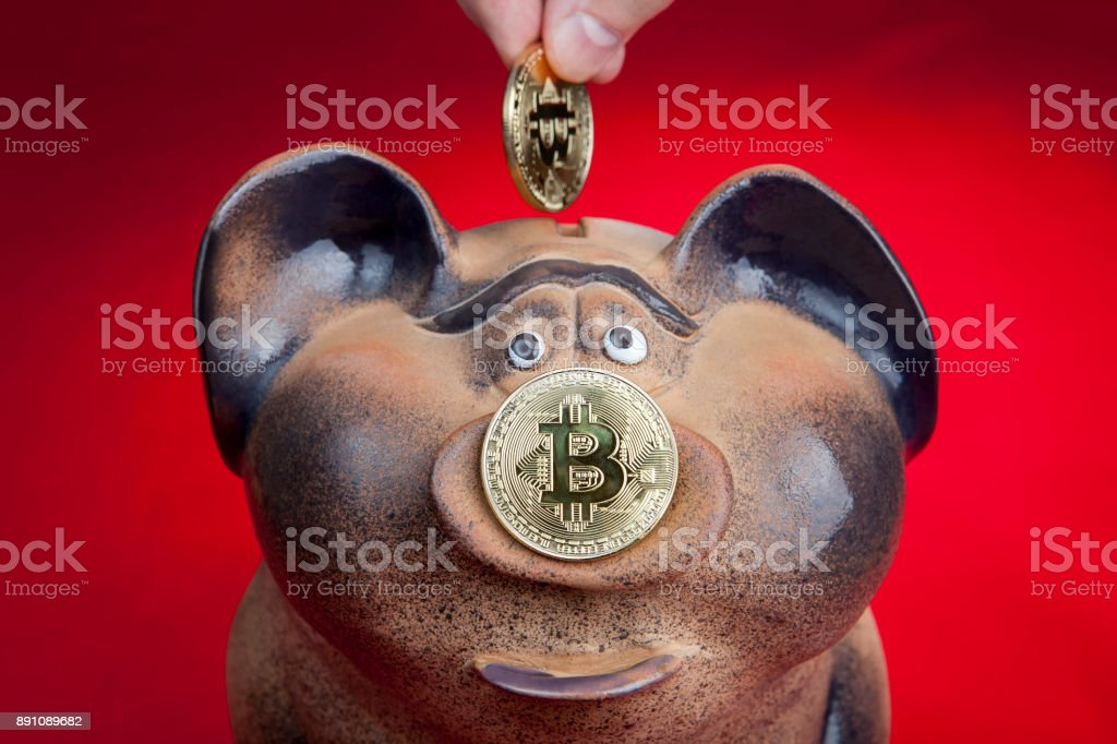 Human fingers lowers bitcoin coin into piggy bank slot. stock photo
