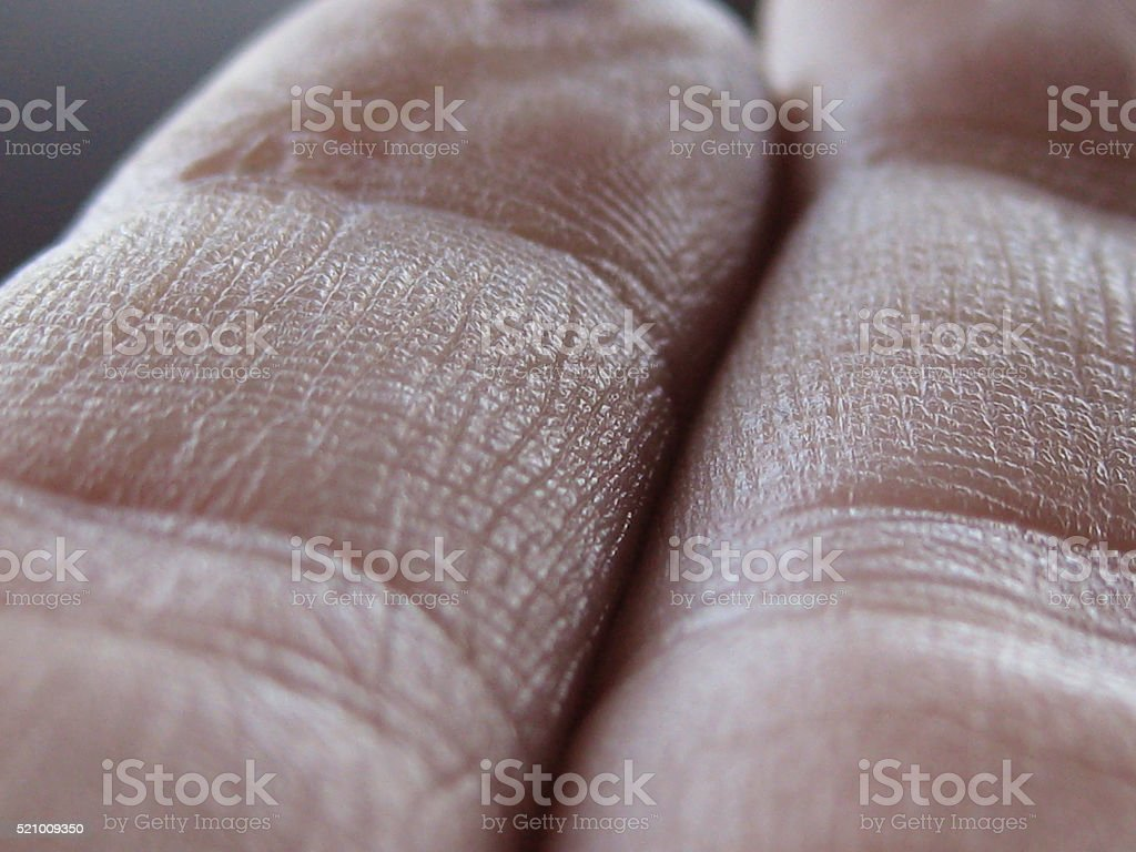 Human Fingers stock photo