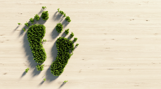 Human foot print symbol made of green trees on wood background. Directly above. Horizontal composition with copy space. Green energy concept.