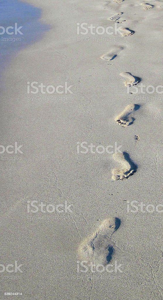 Human footprints on the sea beach. royalty-free stock photo