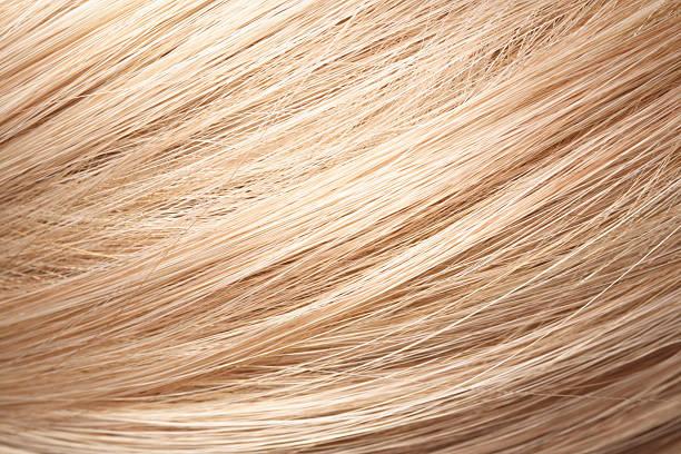 Menschliches Haar – Foto