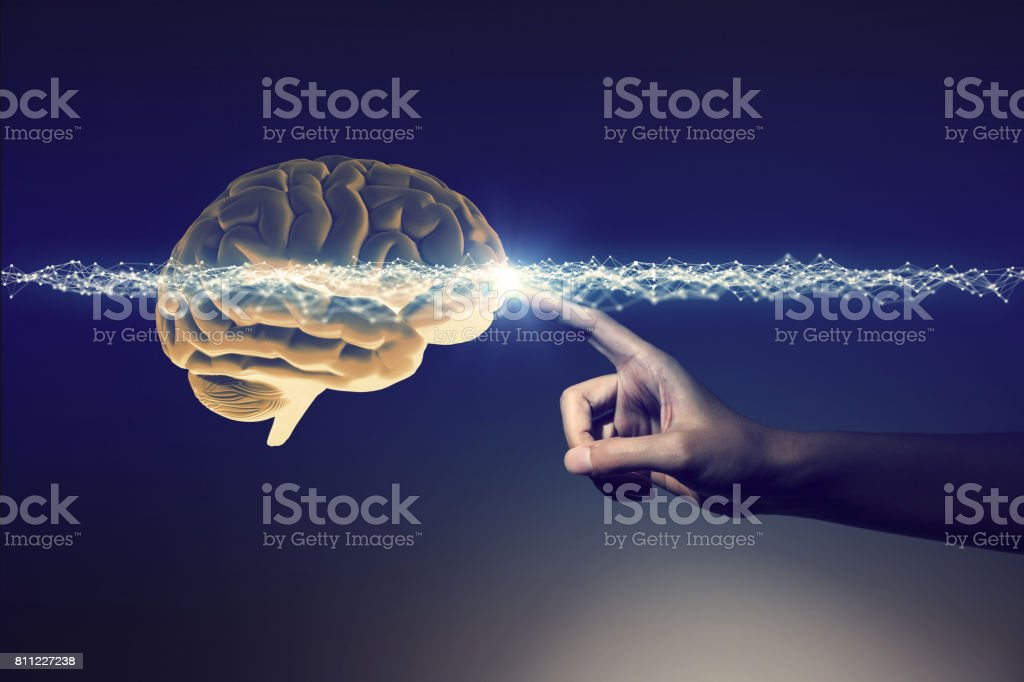 human hand and brain, 3D rendering stock photo