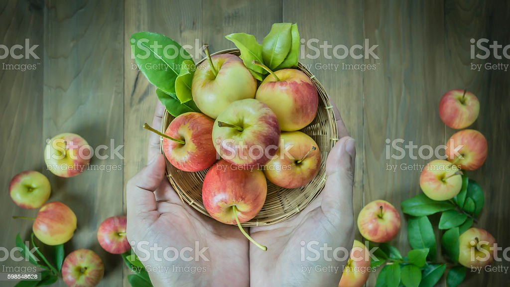 human hand holding  apple photo libre de droits