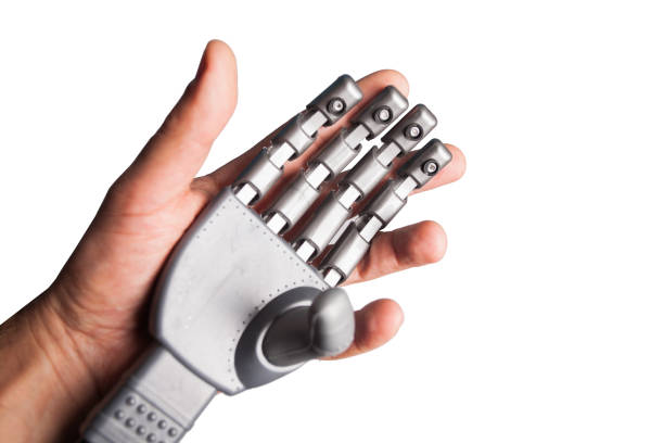 human hand holding robotic hand isolated human hand holding robotic hand prosthetic hand stock pictures, royalty-free photos & images