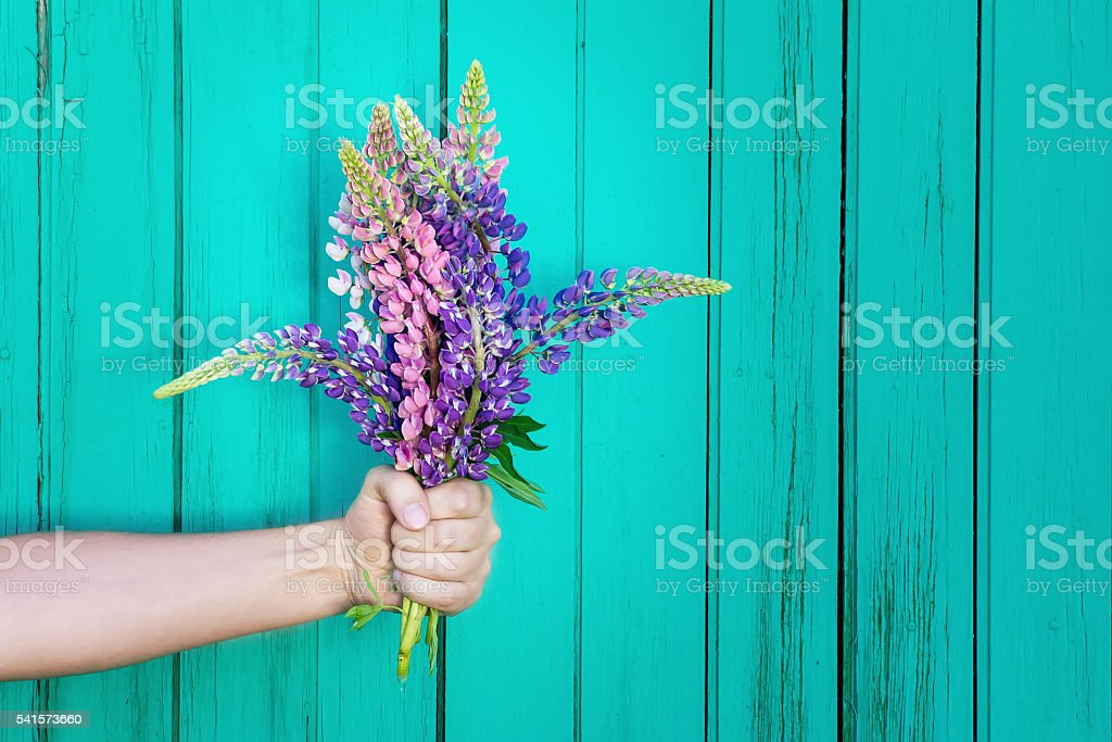 Human hand is holding a bouquet of wildflowers. Celebration scene stock photo