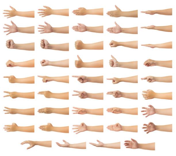 menselijke hand isoleren op witte achtergrond - wijzen handgebaar stockfoto's en -beelden
