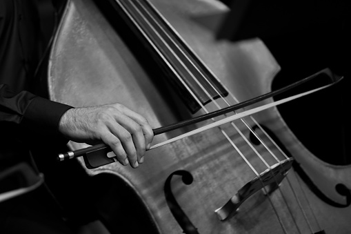 Human Hand playing the contrabass