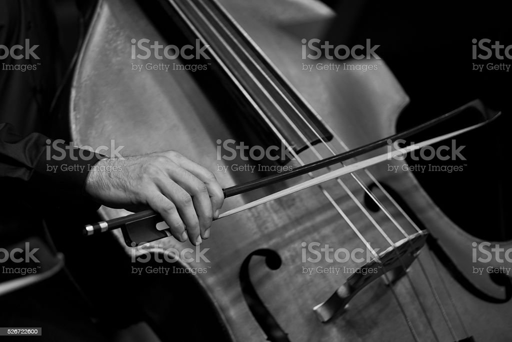Human Hand playing the contrabass stock photo