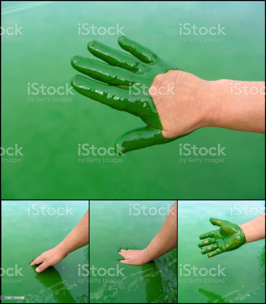 Human hand polluted and green harmful substance. stock photo