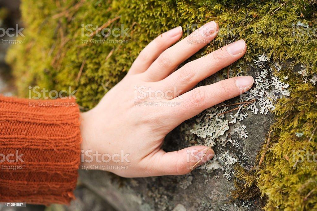 Human hand touching stone stock photo