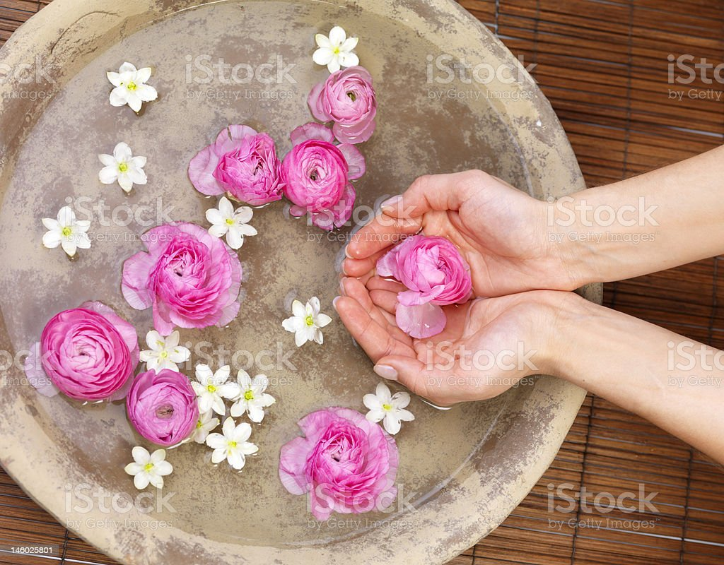 Human hands holding red roses in spa stock photo