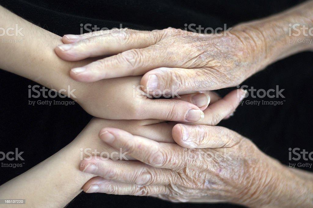 Human Hands royalty-free stock photo