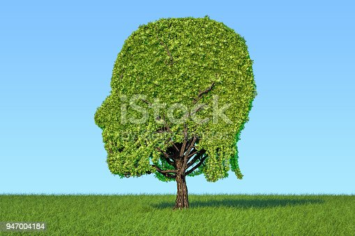 istock Human head shaped tree on the green grass against blue sky, 3D rendering 947004184