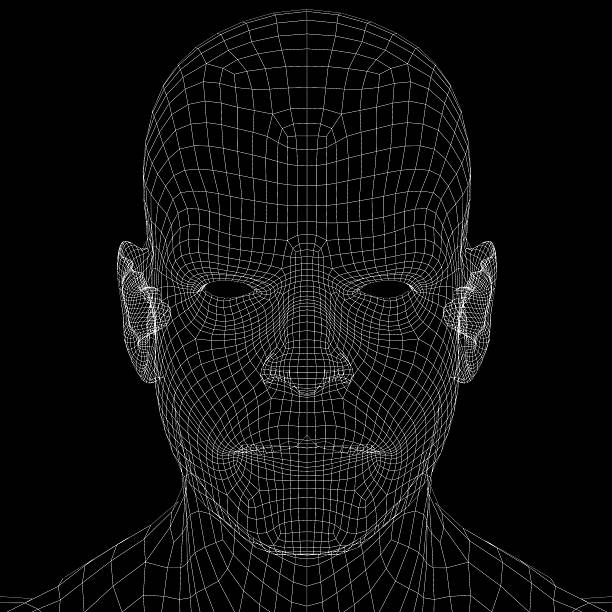 Best Wireframe Face Stock Photos, Pictures & Royalty-Free