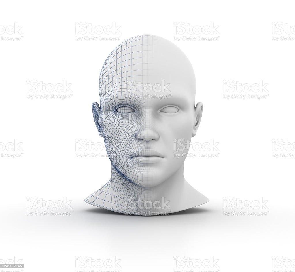 Human Head Wireframe stock photo
