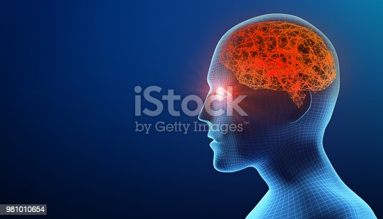 istock Human head with brain. Alzheimer's disease. Wireframe model on blue background, artificial intelligence in futuristic technology concept, 3d illustration 981010654