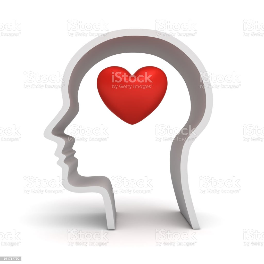 Human head with heart inside isolated on white background with shadow stock photo