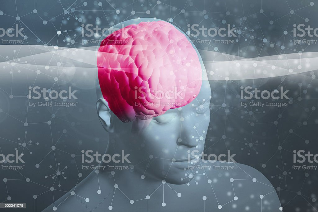 Human head with visible brain and brainwaves, connections stock photo