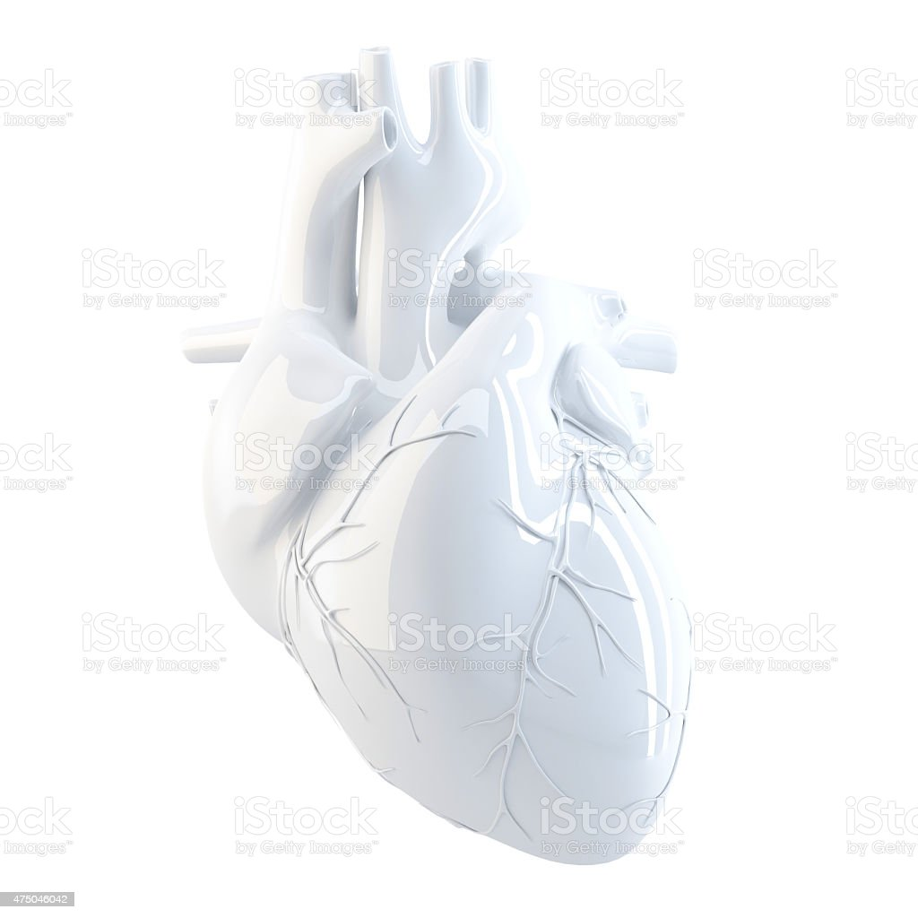 Human Heart. 3d render. Isolated, contains clipping path. stock photo