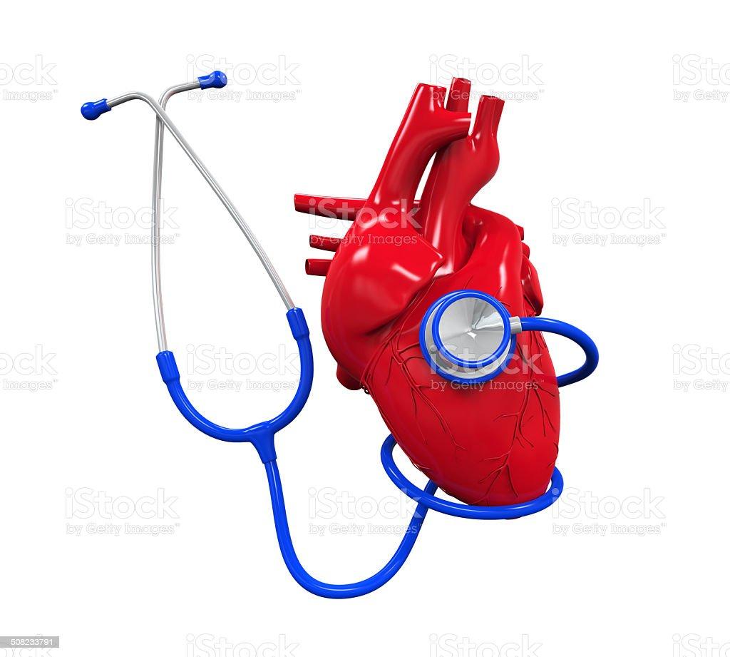 Menschliches Herz Und Stethoskop Stock-Fotografie und mehr Bilder ...