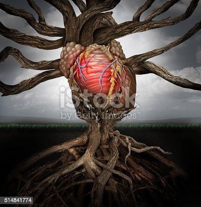 175407085istockphoto Human Heart Health Concept 514841774