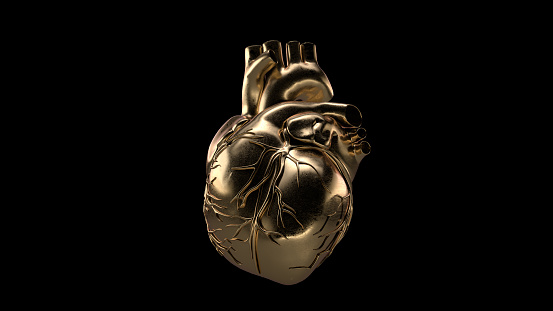 Human heart made of gold isolated. 3D illustration