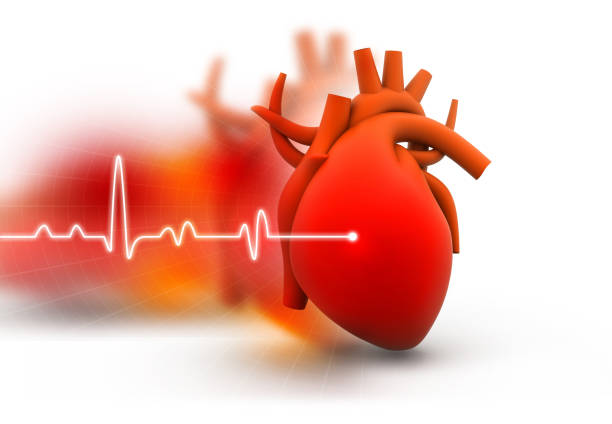 human heart - wave icon stock photos and pictures