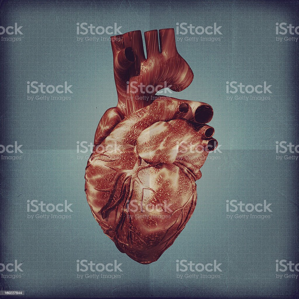 Human heart vintage blueprint. royalty-free stock photo
