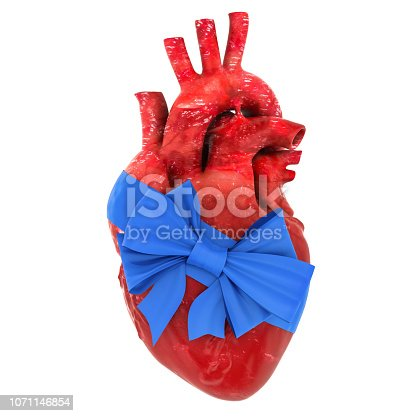 istock Human heart with bow and ribbon. 3D rendering isolated on white background 1071146854