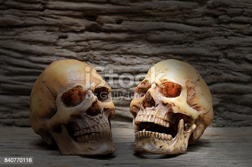 1176385551istockphoto Human human skull on old beautiful wooden background.  Still life style. 840770116