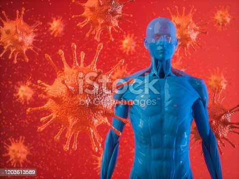 Human Immune System And Virus
