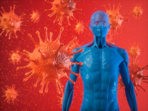 Menschliches Immunsystem und Virus – Foto