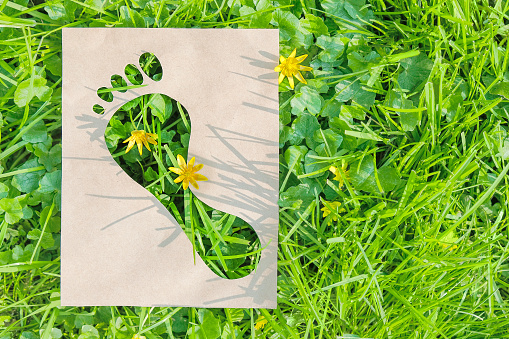 Ecological footprint made of recyclable paper over green grass. Copy space